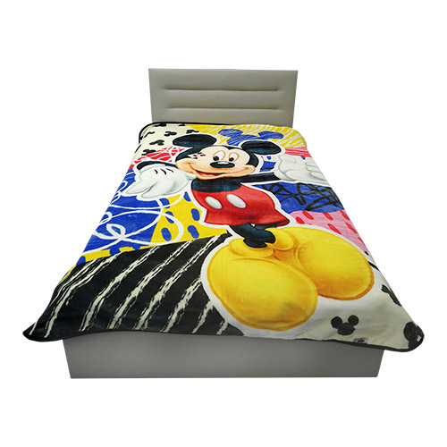 STER DISNEY MICKEY MOUSE 160x220